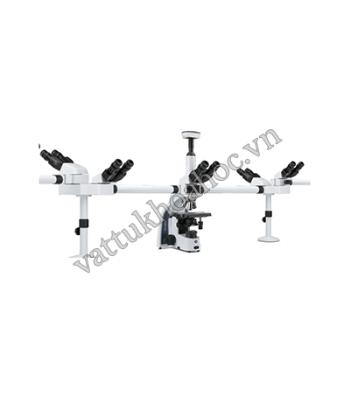 Kính hiển vi 5 người quan sát (vật kính IOS) Euromex IS.1156-PLi5
